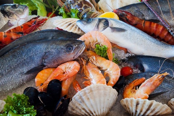 Seafood for low carb diets
